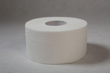 Tualetes papīrs Exclusive ,2 slāņi, rullī 420g